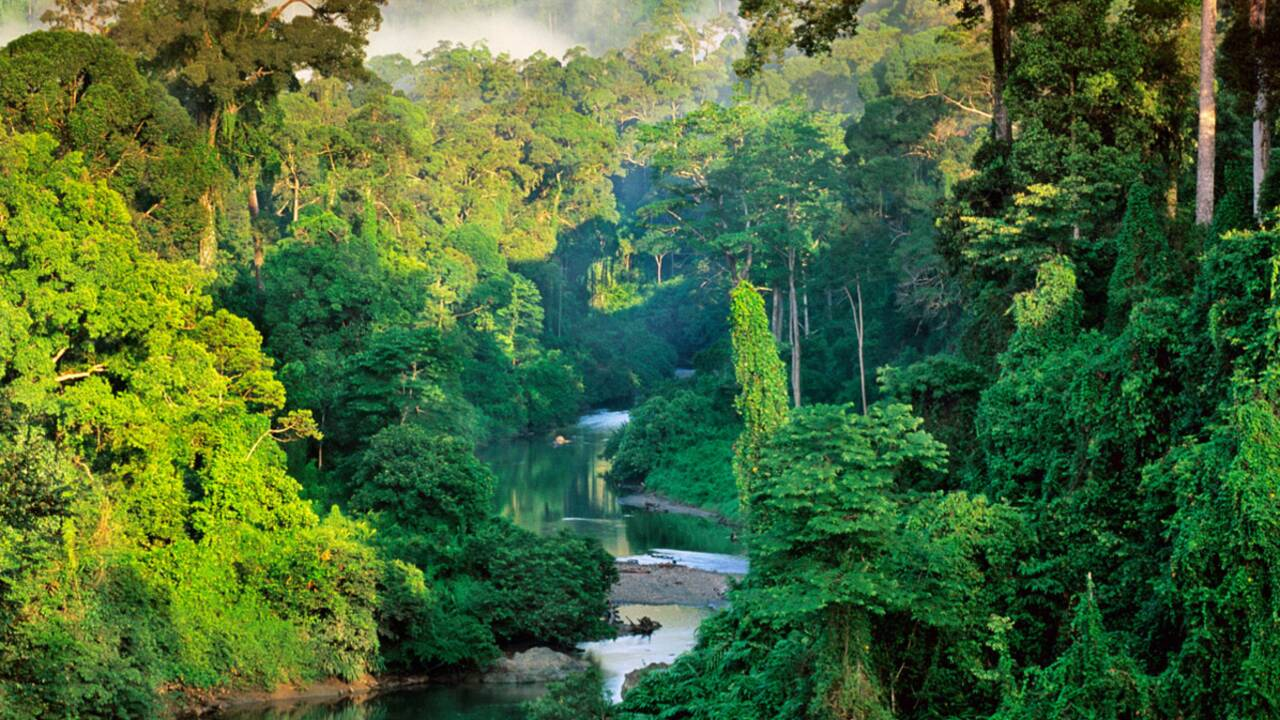 Ecotourisme : tout savoir sur l'écotourisme