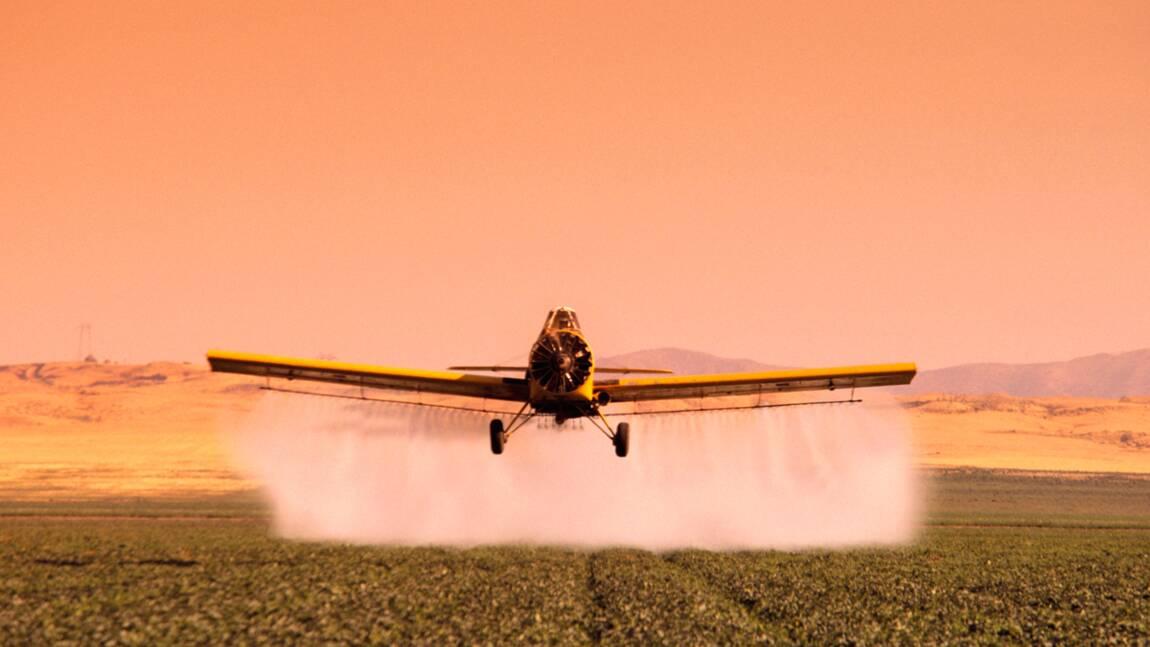 Pesticides : Bruxelles fait un premier pas