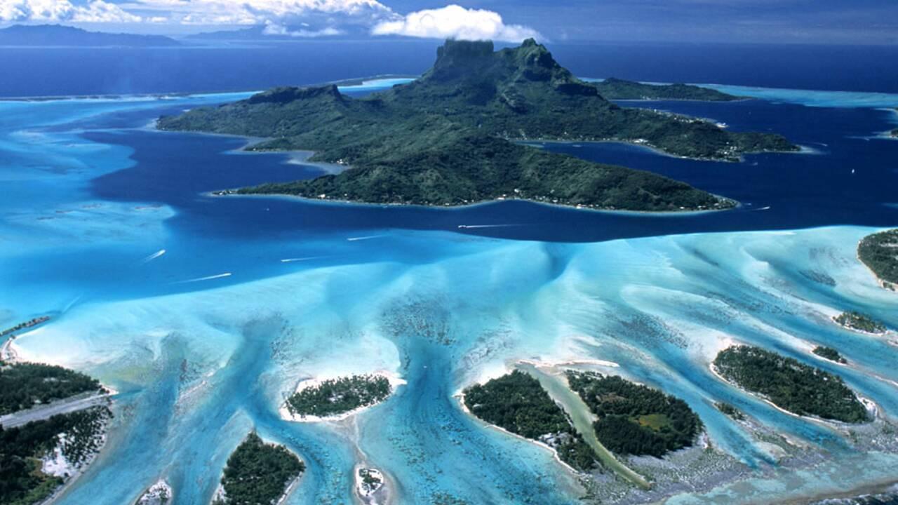 Biodiversité marine : tout savoir sur la biodiversité marine
