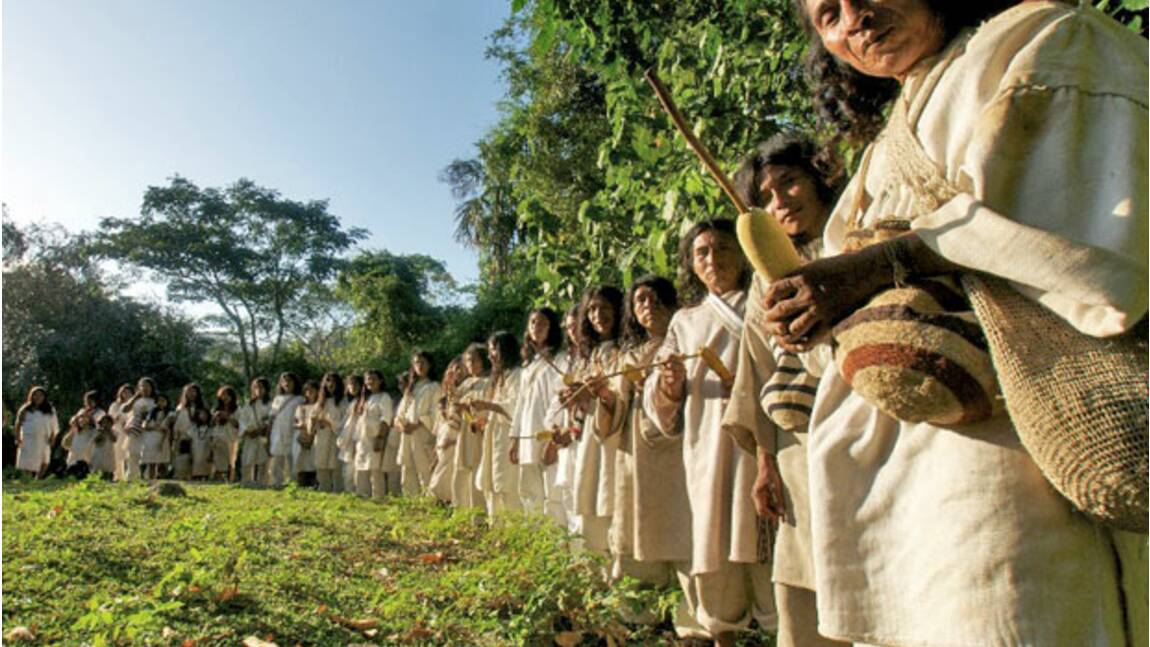 GEO aide les indiens Kogis à sauver leur forêt