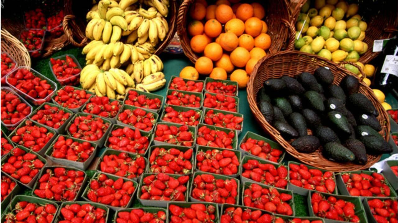 Produits bio : tout savoir sur les produits bio