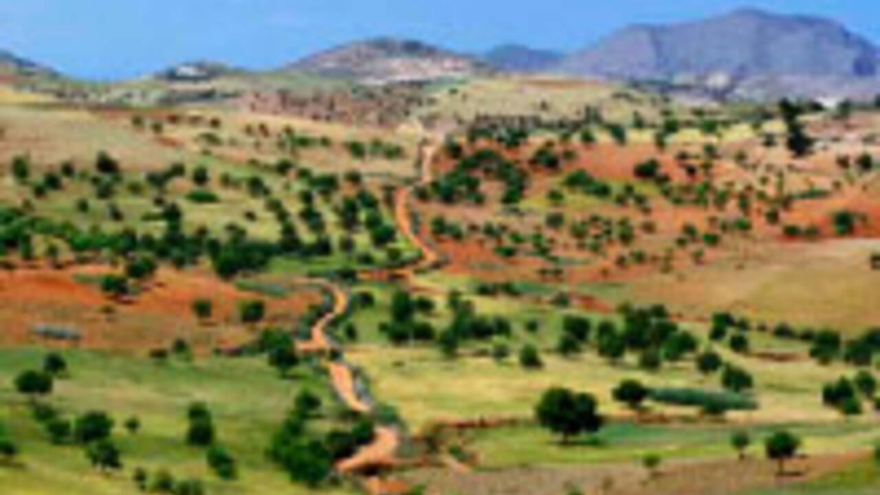 GEO n°374 - Avril 2010 - Spécial Marrakech et le Haut Atlas