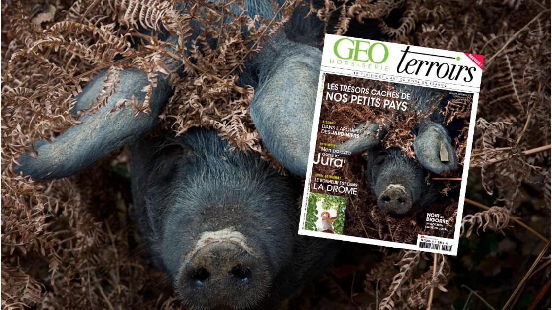 Hors-série GEO Terroirs - Le plaisir et l'art de vivre en France