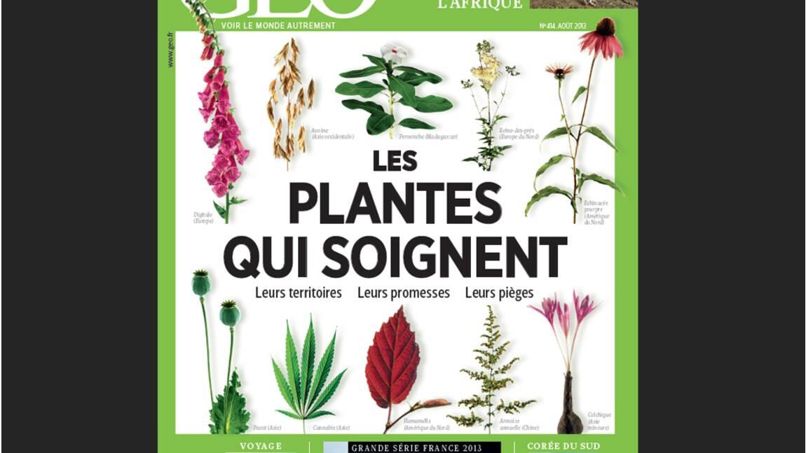 Magazine GEO - Spécial Les plantes qui soignent (n°414, août 2013)