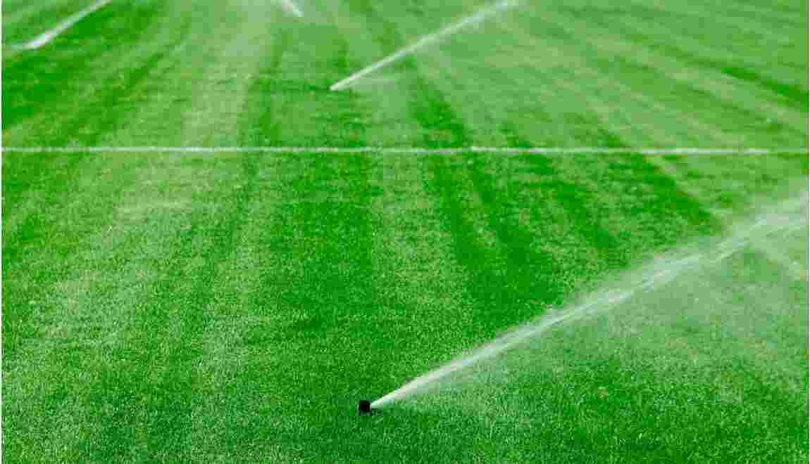 Football : faut-il généraliser les pelouses synthétiques ?