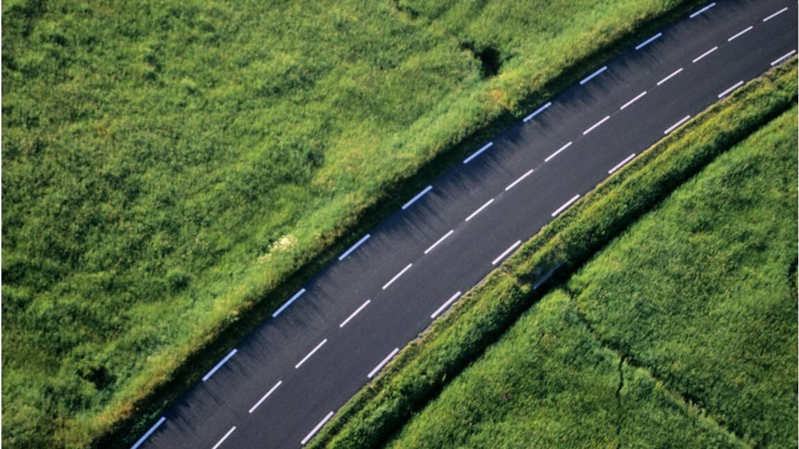 Protection de la biodiversité : faut-il arrêter de construire des autoroutes ?