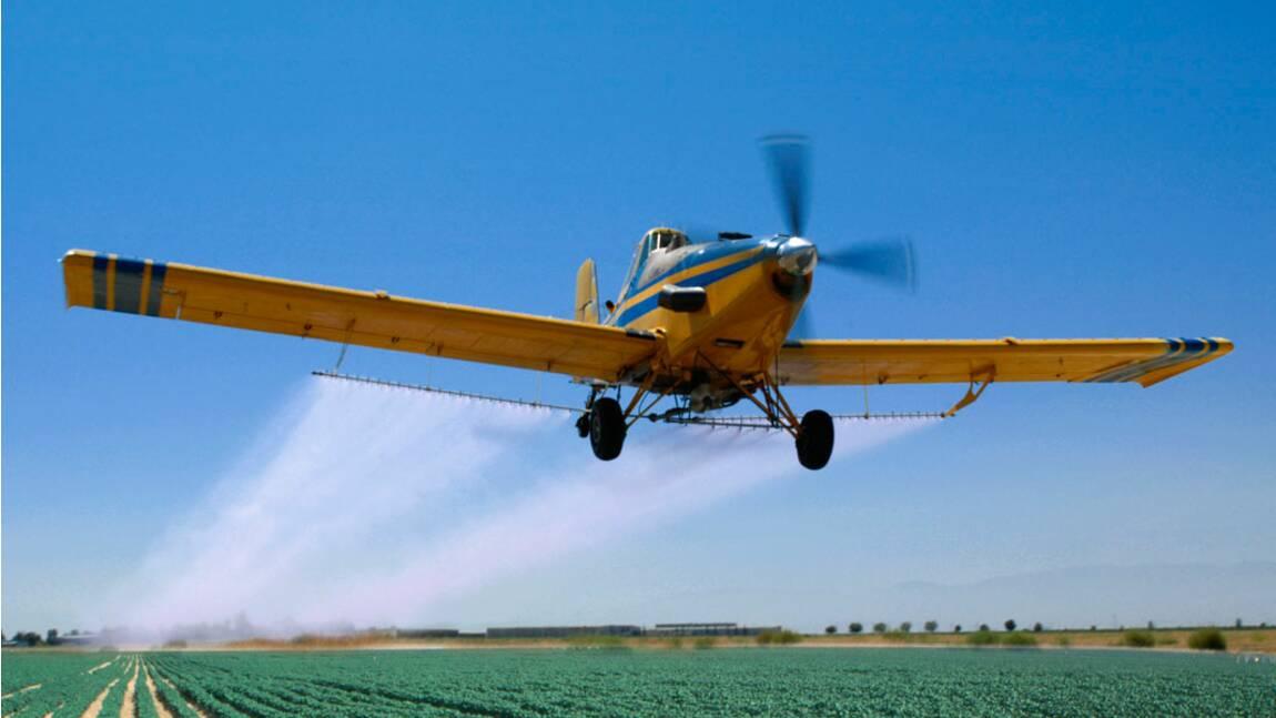Pesticides : faut-il interdire la pulvérisation par avion ?