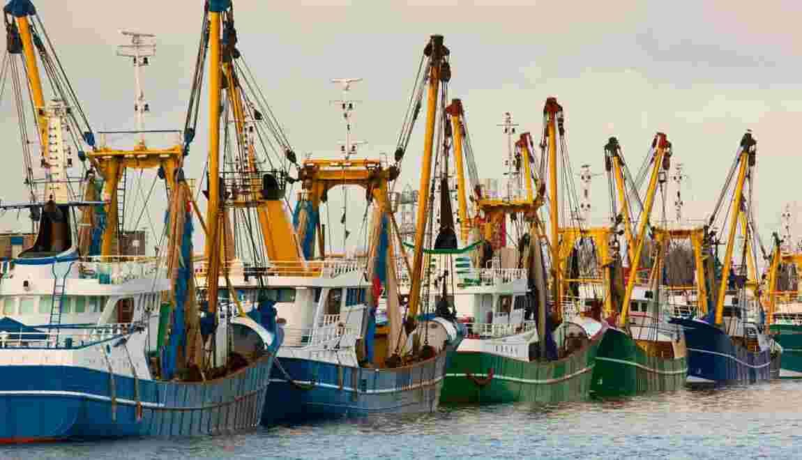 Faut-il interdire la pêche en eaux profondes en France ?
