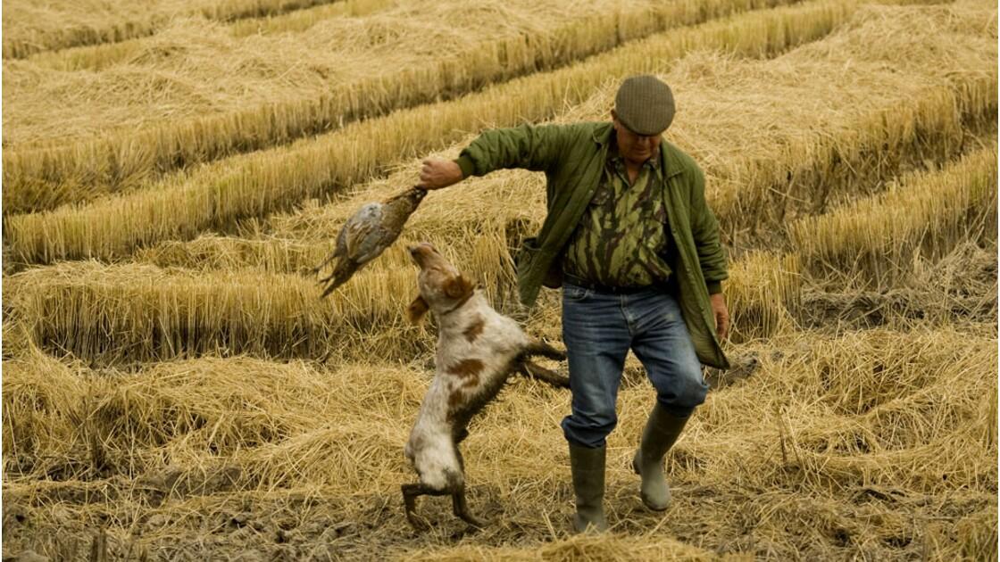 """Selon vous, la chasse peut-elle être une activité """"durable"""" ?"""