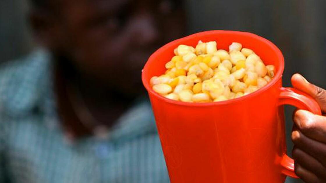 Aide alimentaire : faudrait-il sanctionner les pays qui ne tiennent pas leurs promesses ?