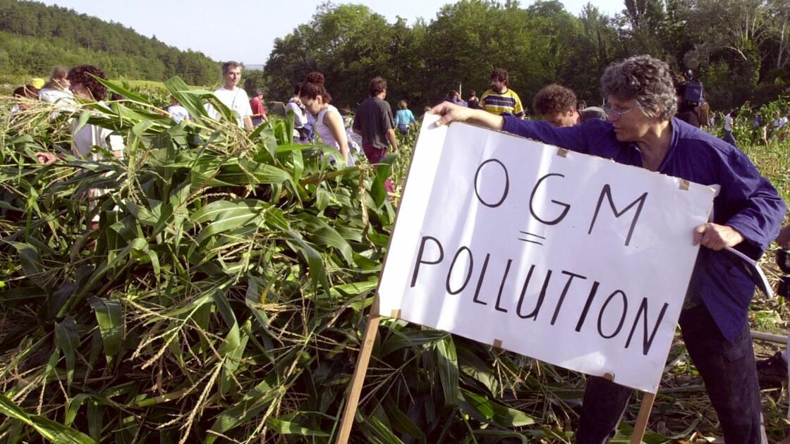 Culture des OGM : faut-il consulter les citoyens par un référendum ?