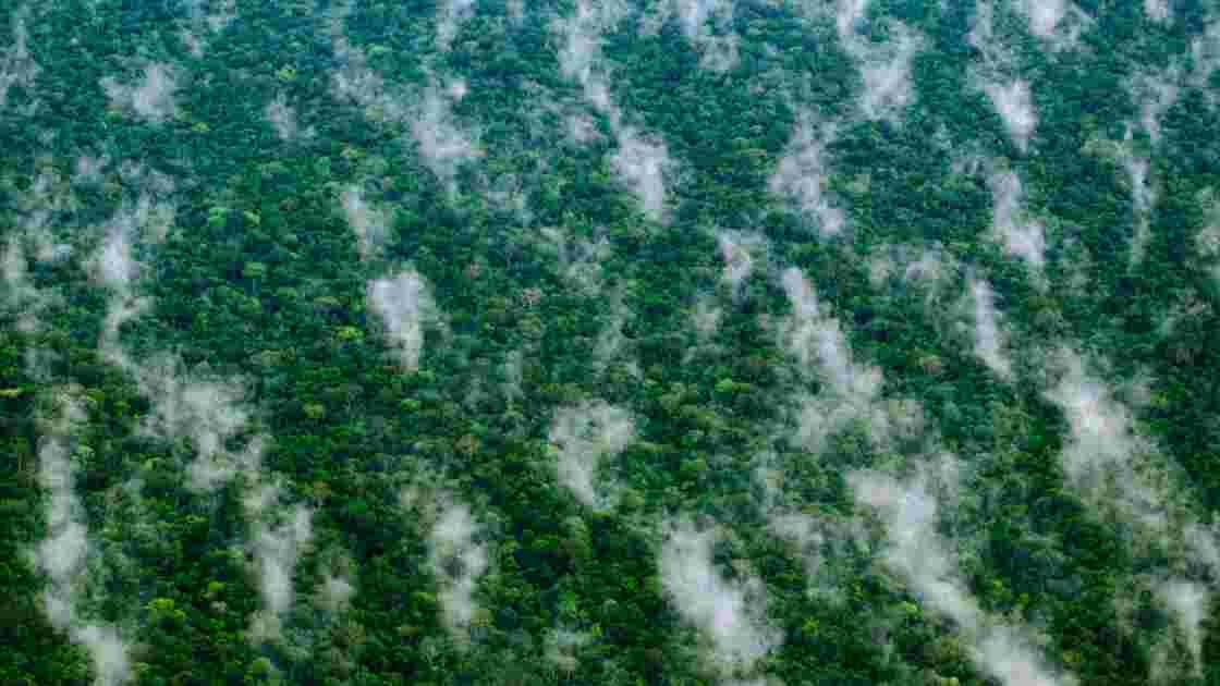 Pétrole : pour le forage au détriment des Indiens d'Amazonie ?