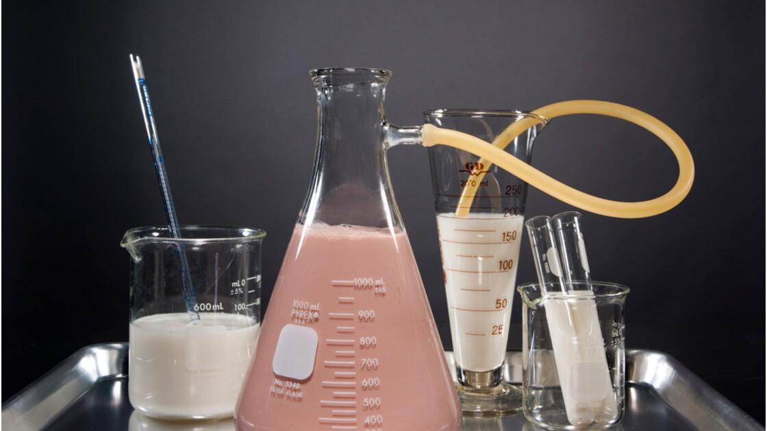 Achèteriez-vous du lait synthétique ?