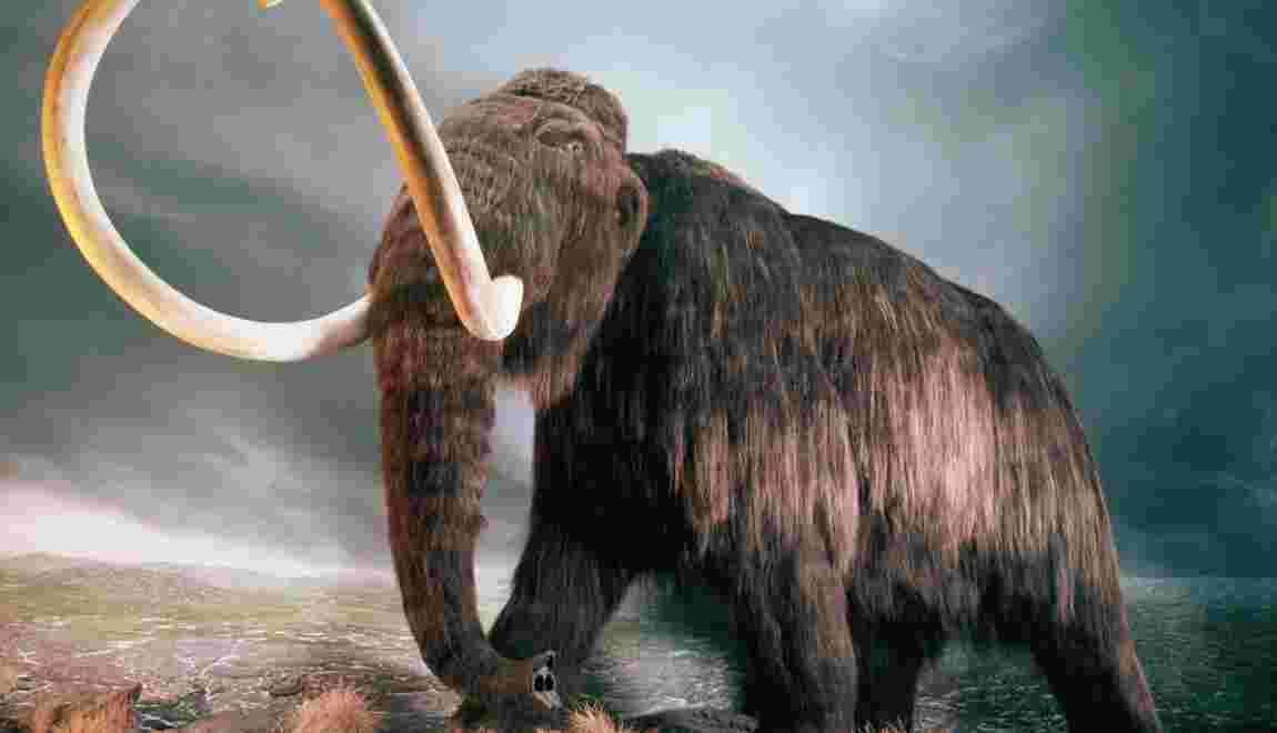 Etes-vous d'accord pour faire revivre des espèces disparues ?