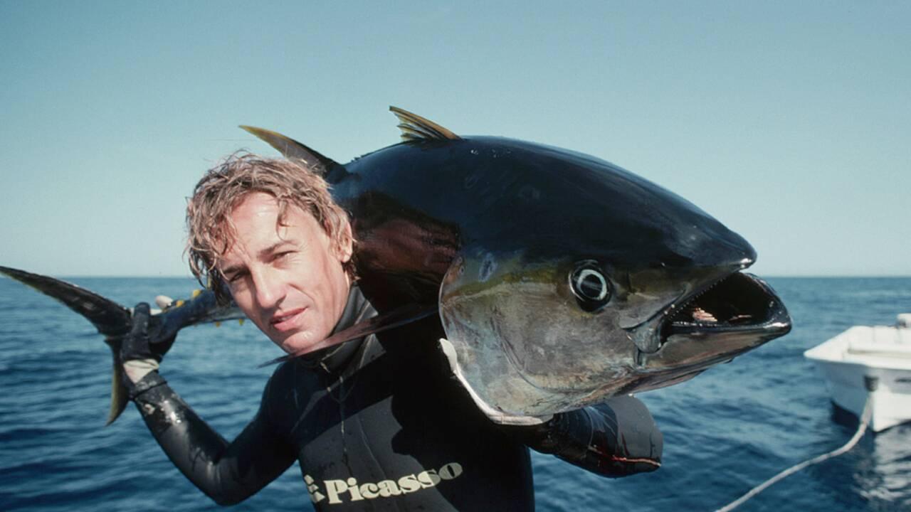 Thon rouge menacé : faut-il interdire la pêche sportive ?