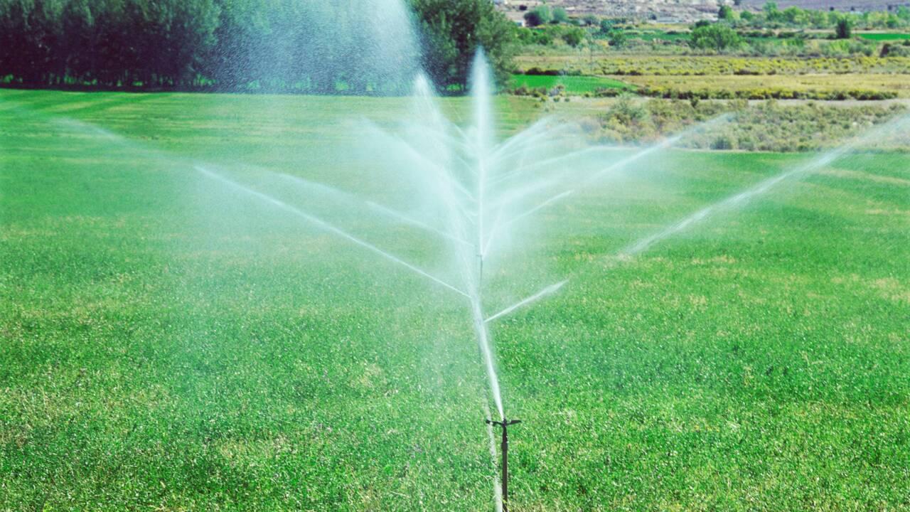 Faut-il taxer les pesticides pour limiter leur utilisation ?