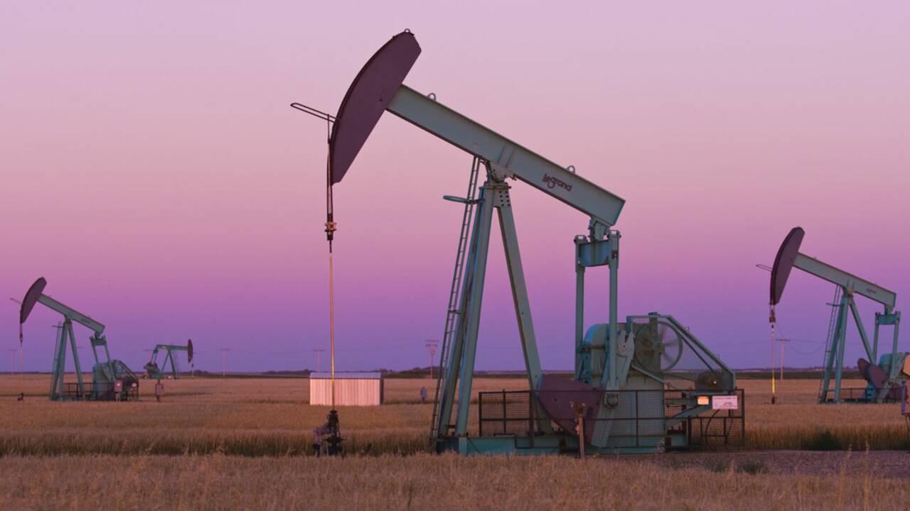 Secteur pétrolier : faut-il interdire les subventions publiques ?