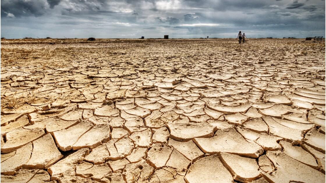 Réchauffement climatique : faut-il s'y adapter ou le combattre ?