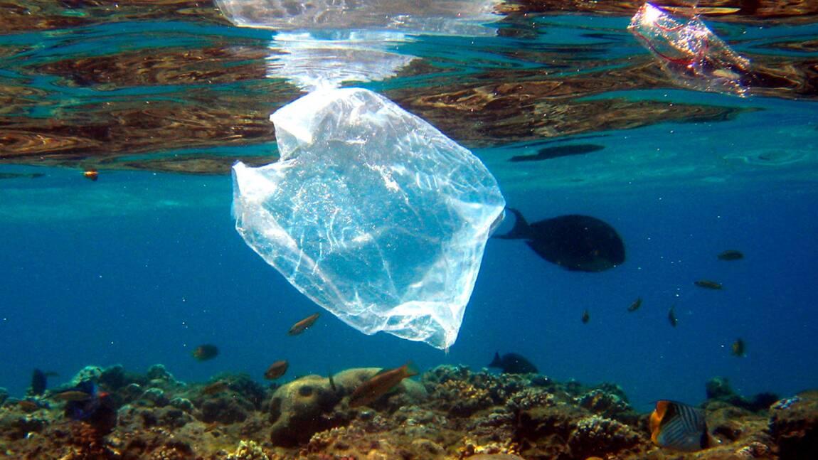 Tourbillon d'ordures sur le Pacifique : doit-on intervenir ?