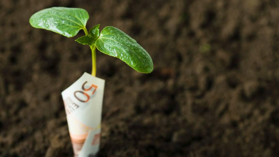 Pensez-vous que la taxe carbone va réduire votre pouvoir d'achat ?