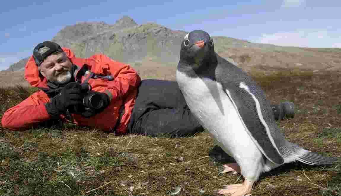 Faut-il limiter le tourisme dans les régions polaires ?