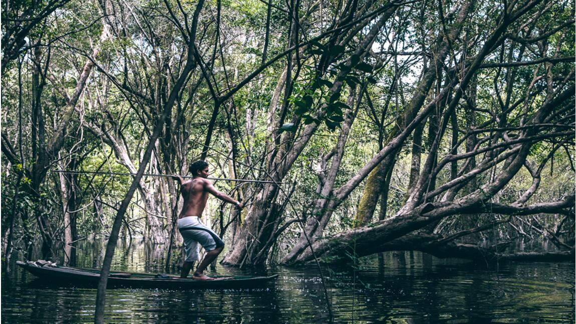 """Amazonie : le paradis vert des """"caboclos"""""""