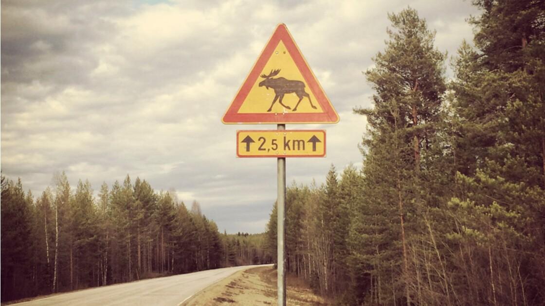 Finlande : Le carnet de route de notre photographe Olivier Touron (Making-of)