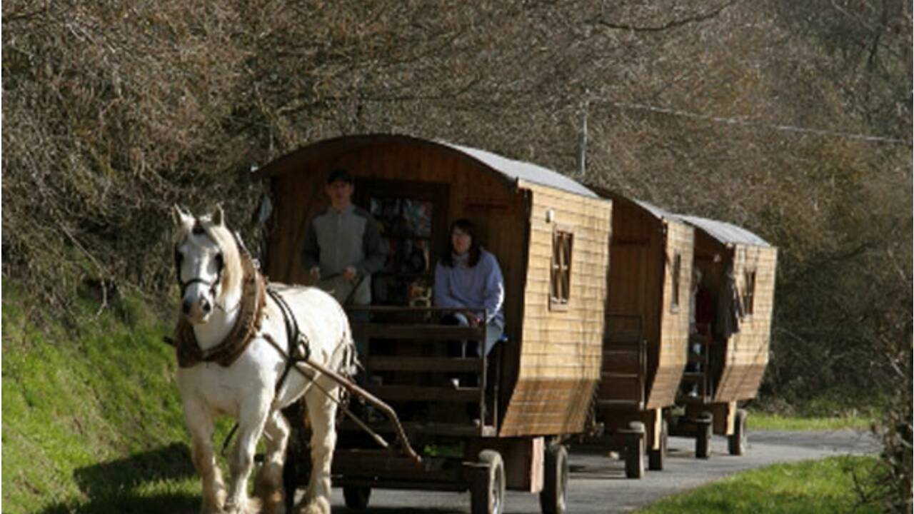 Balade en roulotte dans l'Aveyron