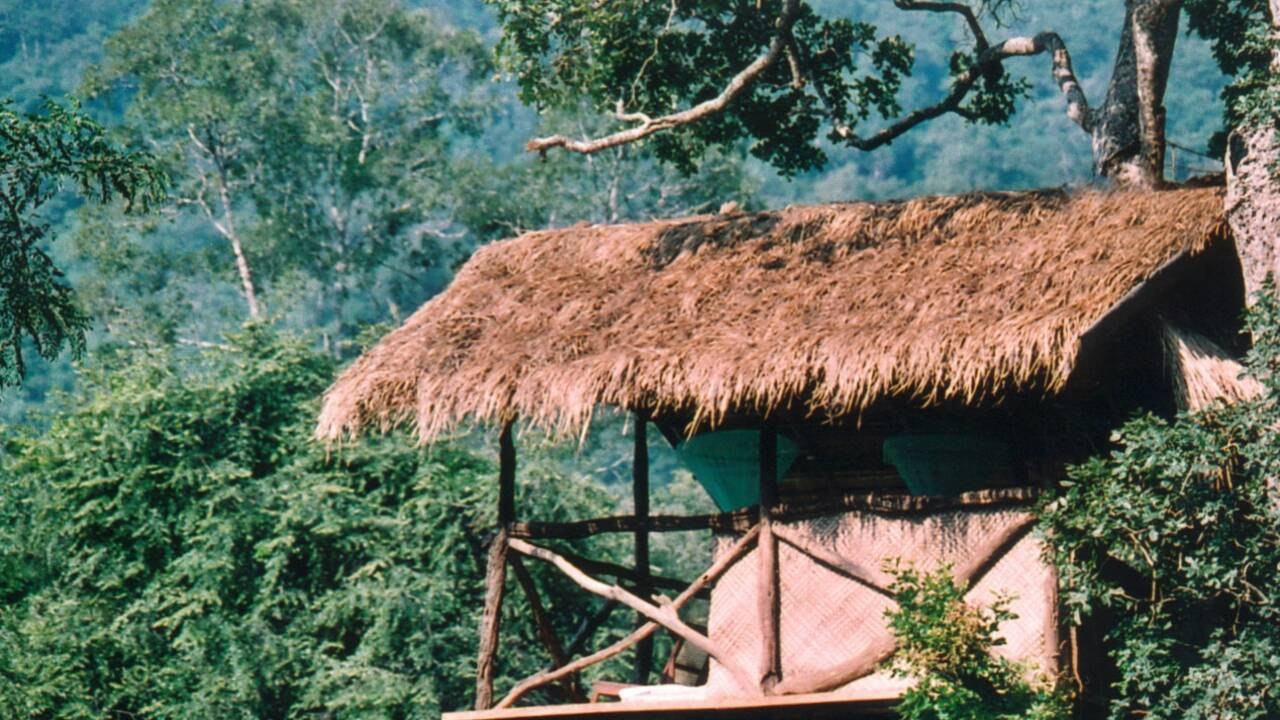 Au Sri Lanka, un écogîte au cœur du royaume des éléphants
