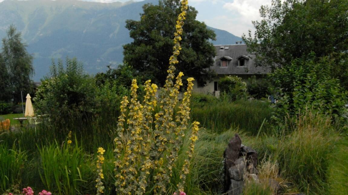 Hôtel bio et végétarien en Suisse