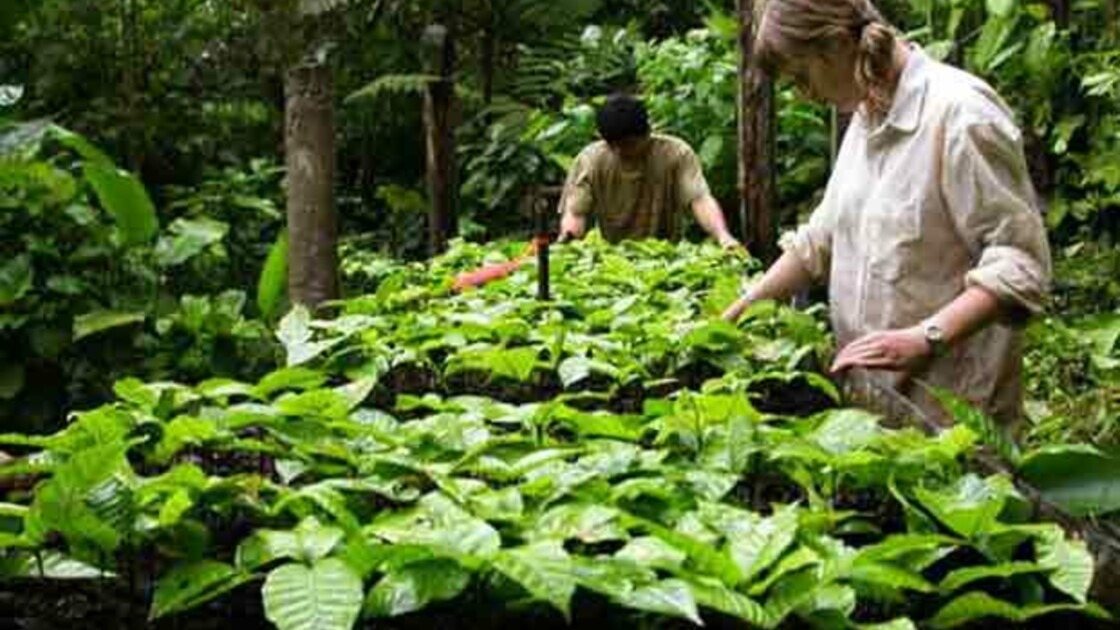 Protéger l'environnement en Equateur