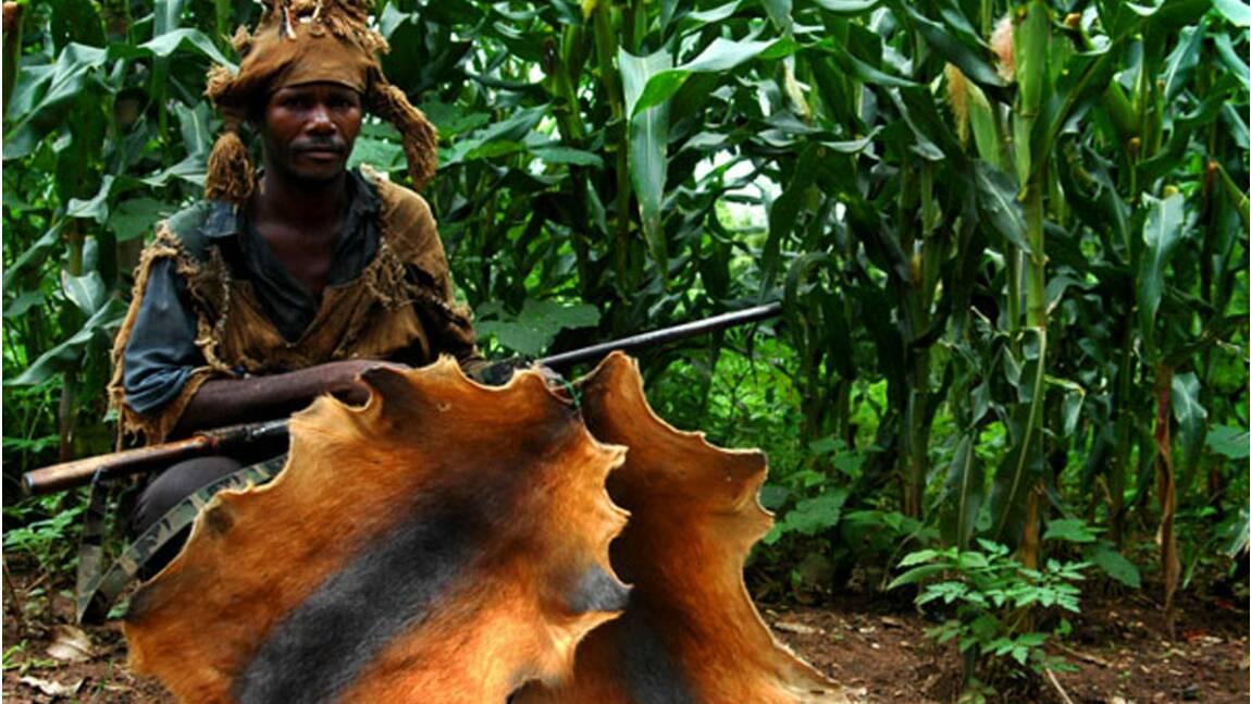Randonnée sur les terres sacrées du Bénin