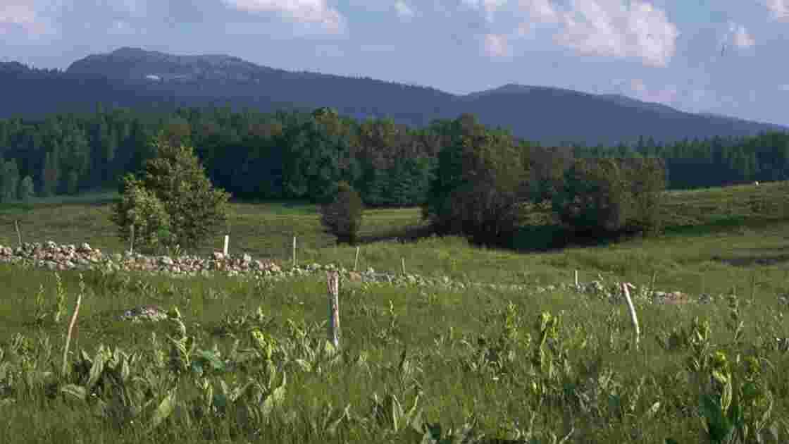 Calendrier Rando Jura 2020.Se Ressourcer Dans Le Parc Naturel Regional Du Haut Jura
