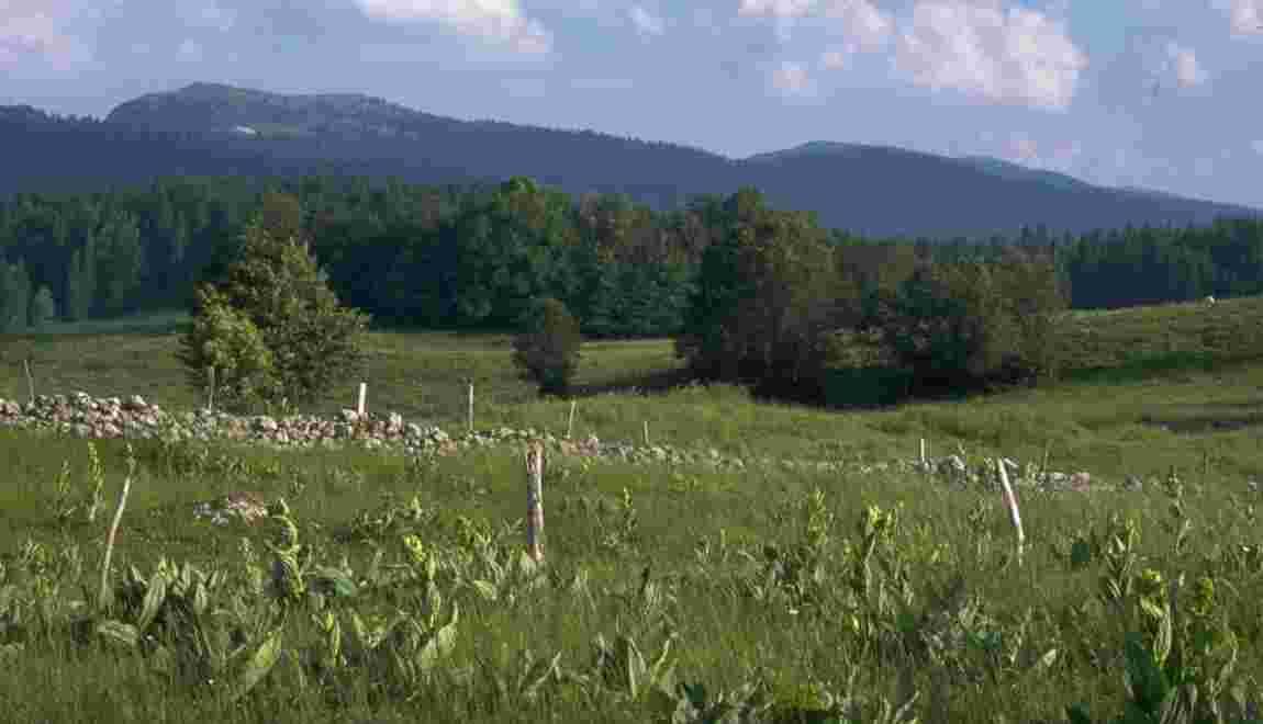 Se ressourcer dans le Parc naturel régional du Haut-Jura