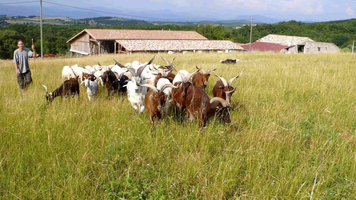 Initiation à l'agro-écologie dans la Drôme