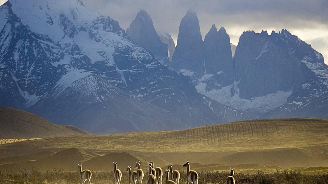 Argentine : Cap vers la Terre de Feu