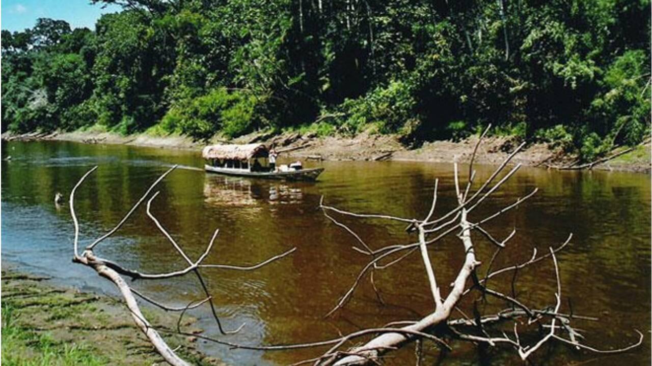 Pérou : dans la jungle amazonienne