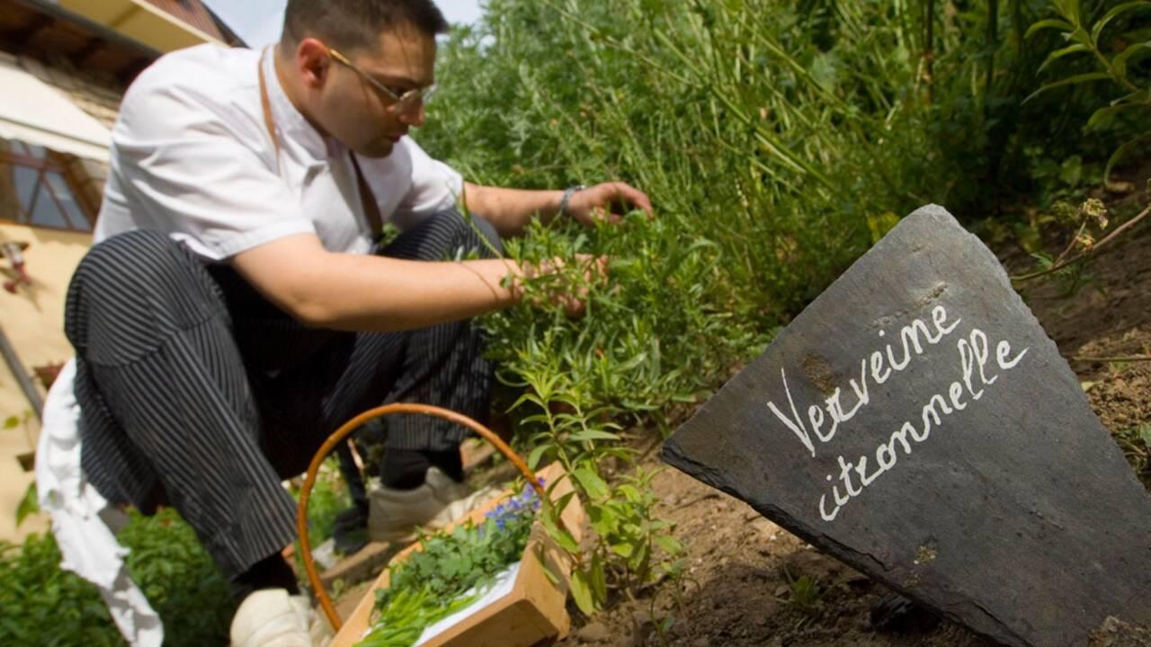 Séjour éthique et écologique dans les Cévennes
