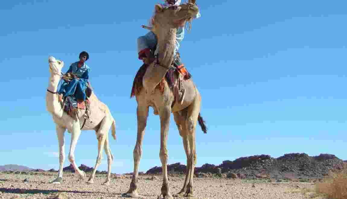 Tourisme solidaire dans le désert algérien