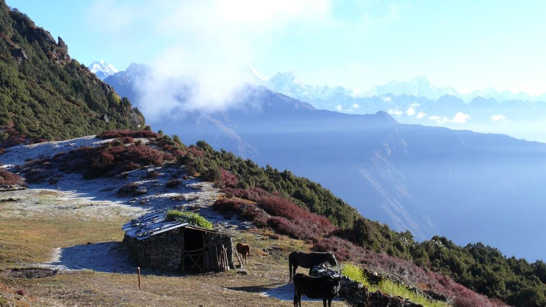 Népal : trek sur les contreforts de l'Himalaya