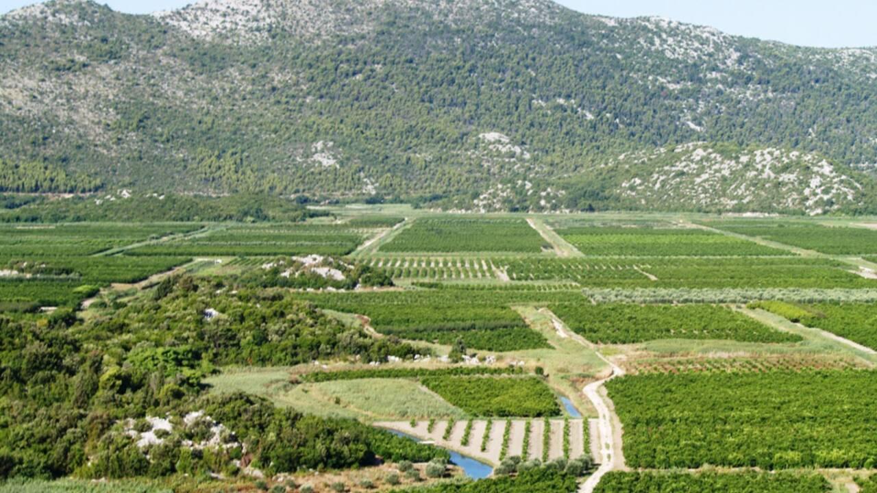 De la Croatie à l'Albanie : l'aventure Chamaco continue (1/2)