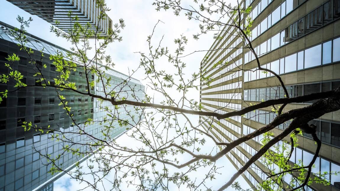 SMEA : le diagnostic des éco-entreprises