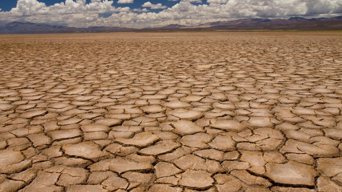 Stress hydrique : quand les eaux nous manquent