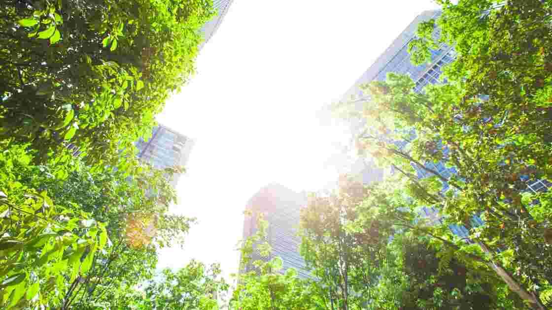 Trame Verte et Bleue, ou comment faire cohabiter urbanisme et espaces naturels