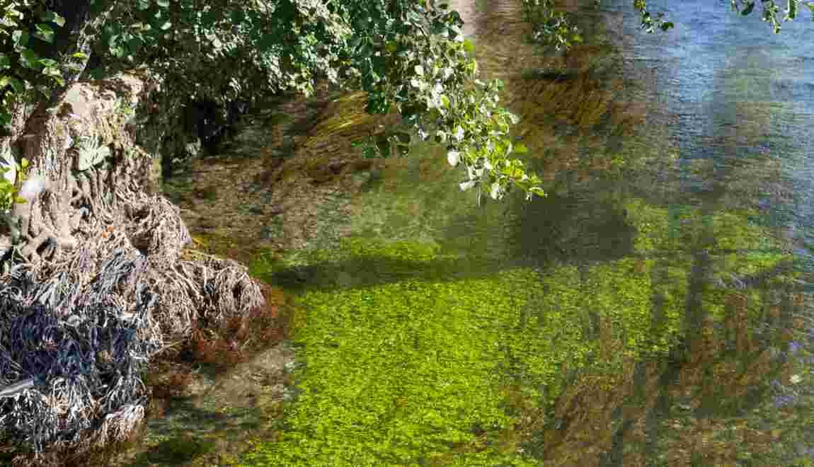 La Sorgue : entre mystère scientifique et légendes d'antan
