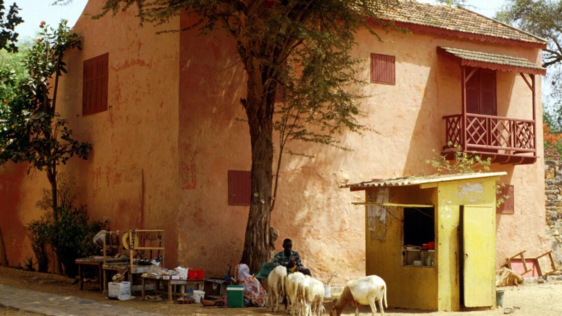 L'île de Gorée, au Sénégal : la magnifique Afrique de Christiane Falgayrettes-Leveau