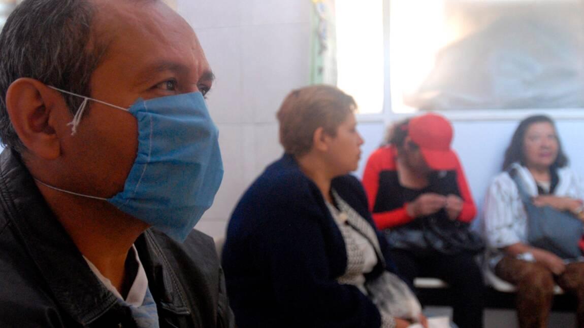 Grippe porcine : état des lieux au lundi 4 mai