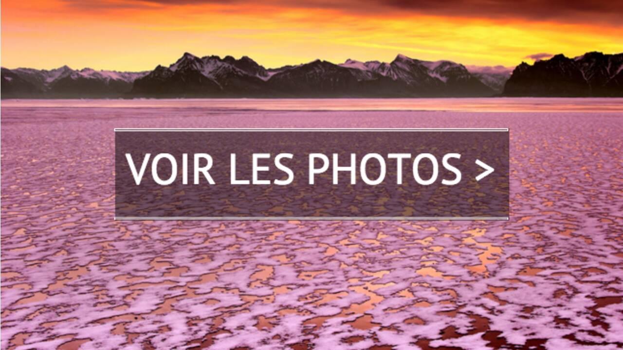PHOTOS - La beauté sauvera le monde
