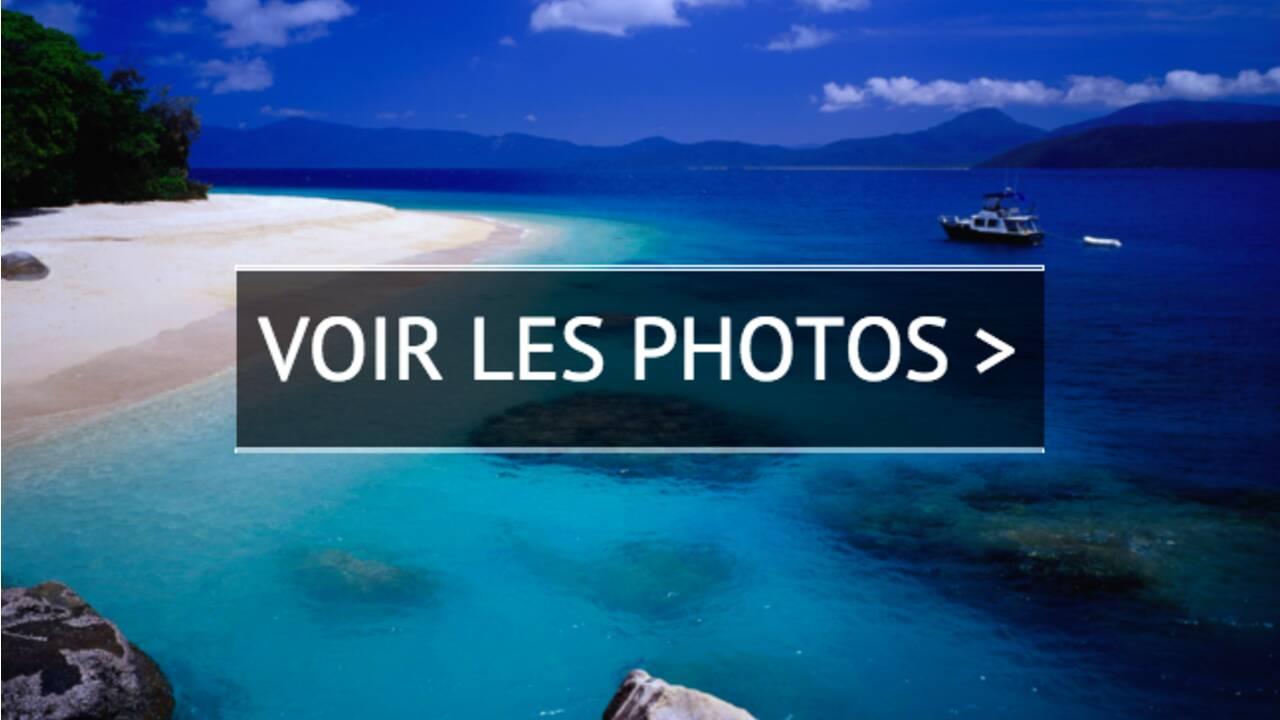 PHOTOS - Le top 10  des expériences à vivre sur la Grande Barrière de corail