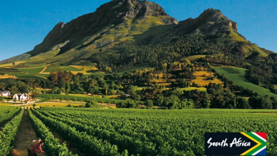 Publi communiqué : Mon vignoble en Afrique du Sud